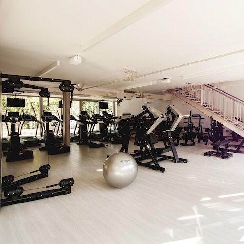 FITNESS and GYM cleaning disinfection products